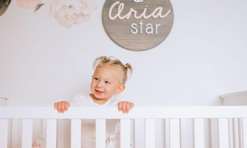 ARIA'S DREAM NURSERY